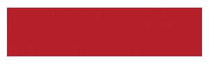 Logo regio it